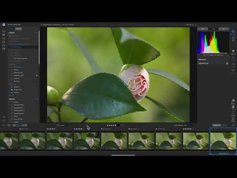 ON1 Photo RAW 2021 Full Crack Download