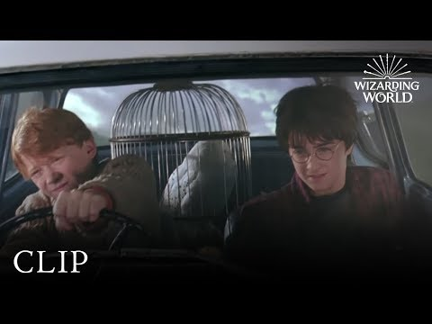 Harry Potter And The Chamber Of Secrets on Windows 10